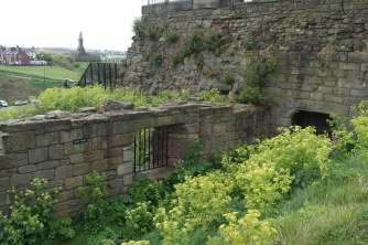 Tynemouth Priory and castle with a view of Collingwood's monument